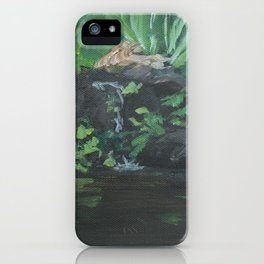 Fountain at the Zoo AC151223b-13 iPhone Case