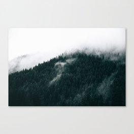 Forest Fog XIV Canvas Print