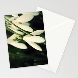 Snowdrops Stationery Cards