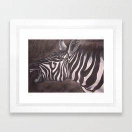 Charcoal Zebra Framed Art Print