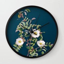 Vintage Blooming Reddish Rosebush Botanical Illustration on Teal Wall Clock