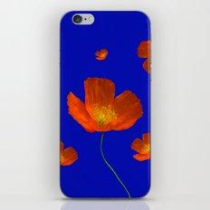 Poppies in th sun iPhone & iPod Skin