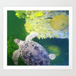 Sea Turtle on Lime Green Art Print
