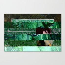 crash_ 08 Canvas Print