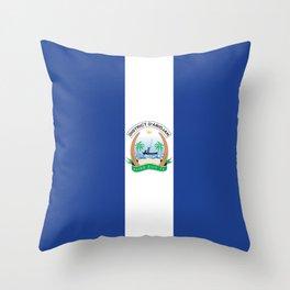 Flag of Abidjan Throw Pillow