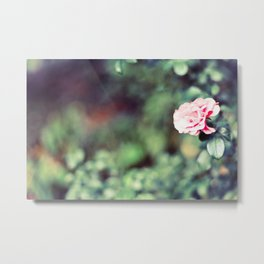 The flowers bloom for You Metal Print