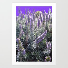 Purple Summer Art Print