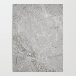 Rustic White Pattern (Black and White) Poster