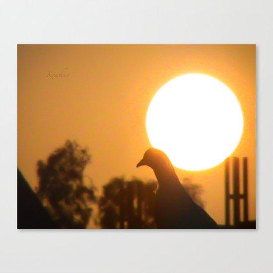 Pigeon Eclipse Canvas Print