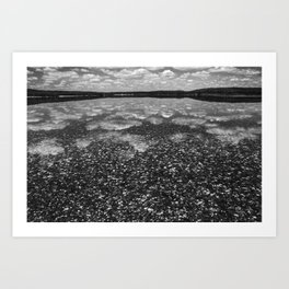 Clouds Reflected Art Print