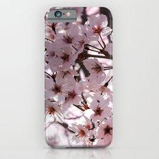 Sakura in Kyoto iPhone 6s Slim Case