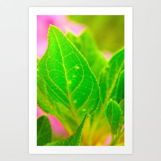 leafy green pink Art Print