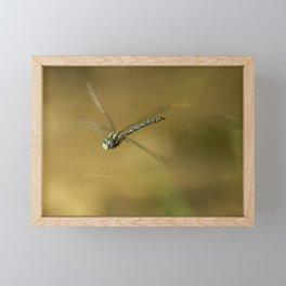 4-stroke Flight Framed Mini Art Print