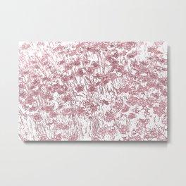 Dianthus Metal Print