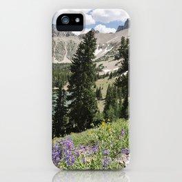 Nevada Summer Wildflowers iPhone Case