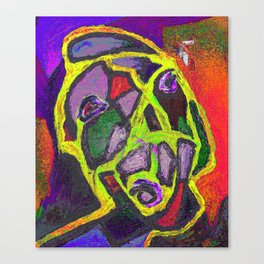 There is an object to be considered: the fly Canvas Print