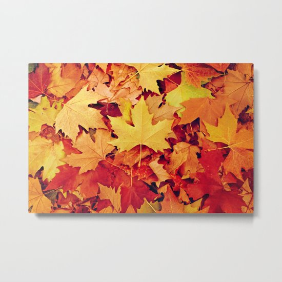 Indian Summer 6 Metal Print