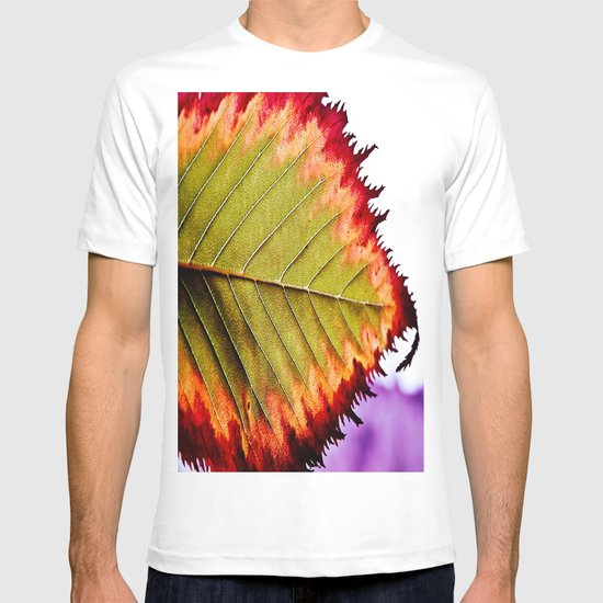 Fall Splendor T-shirt