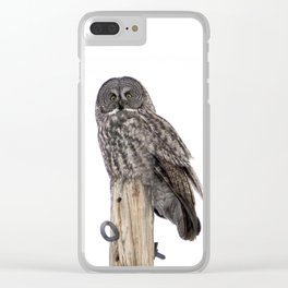 He's a Hoot Clear iPhone Case