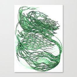 lettuce lattice Canvas Print