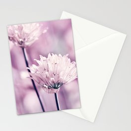 Allium pink macro 257 Stationery Cards