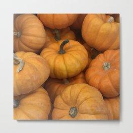 Happy Harvest Country Rustic Pumpkins Metal Print
