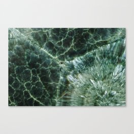 Abstract mineral texture Canvas Print