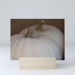 White Pumpkins Mini Art Print