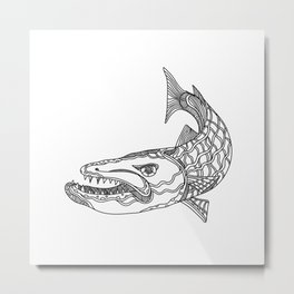 Barracuda Fish Doodle Art Metal Print
