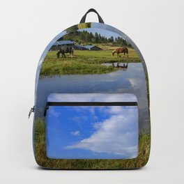 Colorado Country - 5398 Backpack