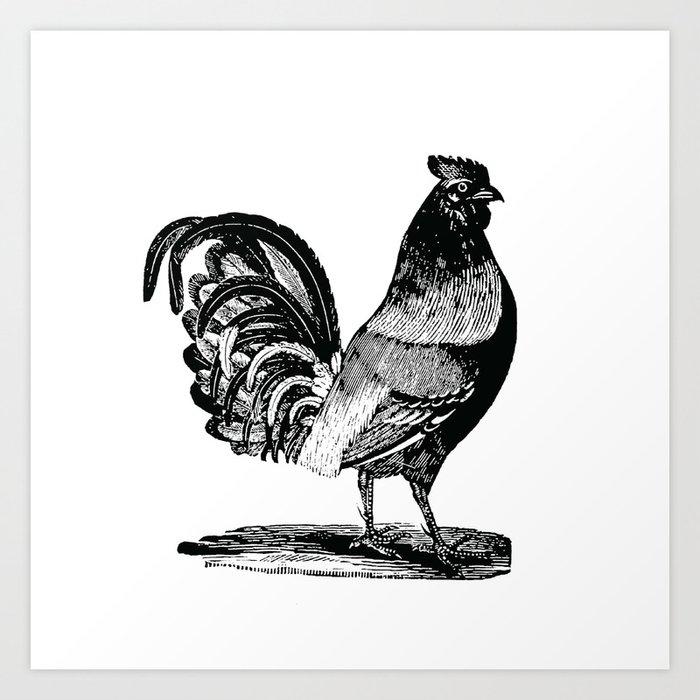 Vintage rooster 1 art print