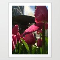 Flower Focus Art Print