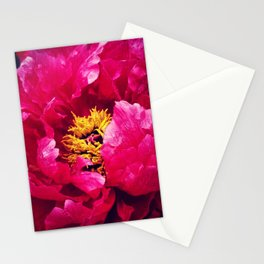 Peonies Please Stationery Cards