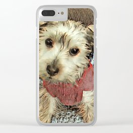 Louis the Yorkshire Terrier Clear iPhone Case
