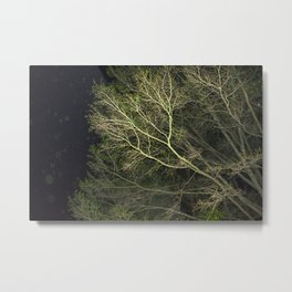 En-tree-ging Metal Print