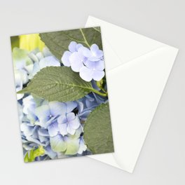 Longwood Gardens - Spring Series 256 Stationery Cards