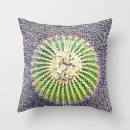 Round Green Cactus Throw Pillow