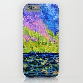 Aurora Borealis Over Lake Michigan iPhone Case