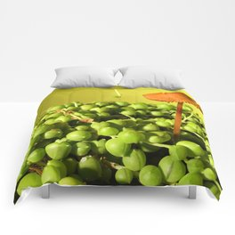 MUSHROOMLAND Comforters