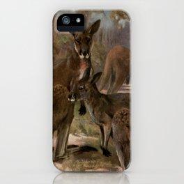 Vintage Kangaroo Painting (1909) iPhone Case