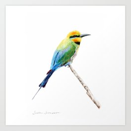 Rainbow Bee Eater by Teresa Thompson Art Print