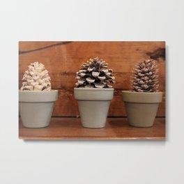 little pine cones Metal Print