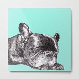 French Bulldog Puppy Metal Print