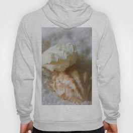 Seashells 1 Hoody
