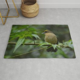 Birds from tropical forest Rug