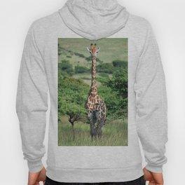 Giraffe Standing tall Hoody