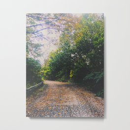 Mystical road Metal Print