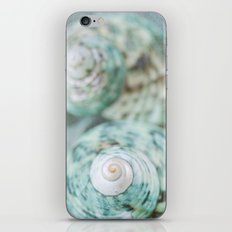 Sea Remnants iPhone & iPod Skin
