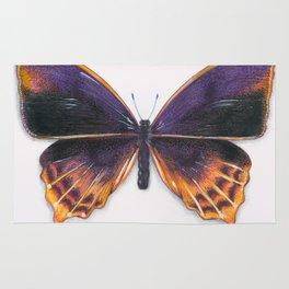 Nymphalidae Alurgis, New Guinea Rug