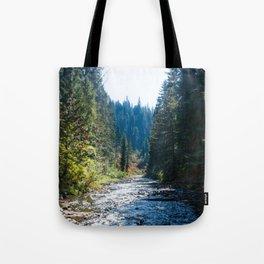 Fall Trees Photography Print Tote Bag